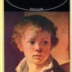 F.m.  dostoievski adolescentul