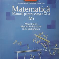 MATEMATICA M1 MANUAL PENTRU CLASA A XI-A - Tena, Andronache, Serbanescu - Manual scolar, Clasa 11