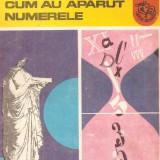 Cum au aparut numerele de Florica T. Campan - Carte educativa