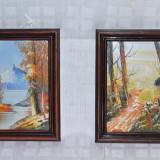 Set 2 tablouri pictate manual