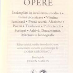 OPERE de M. BLECHER, 2017 - Roman