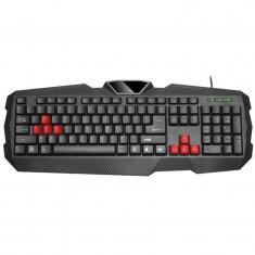 Tastatura Tracer Battle Heroes Shinook USB Black