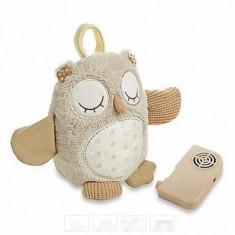 Jucarie muzicala Nighty Night Owl on the go CloudB - Jucarie interactiva
