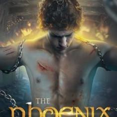 The Phoenix Project - Carte in engleza