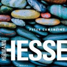 Peter Camenzind - Carte in engleza