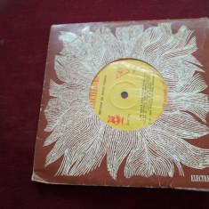 DISC VINIL IONEL FERNIC EDC 791 - Muzica Lautareasca
