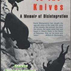 Close to the Knives: A Memoir of Disintegration - Carte in engleza