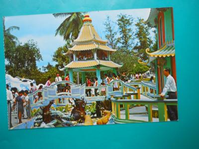HOPCT  32680  ASPECTE - HAW PAR VILLA -SINGAPORE -NECIRCULATA foto