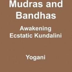 Asanas, Mudras & Bandhas - Awakening Ecstatic Kundalini: (Ayp Enlightenment Series) - Carte in engleza
