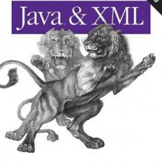 Java & XML - Carte in engleza