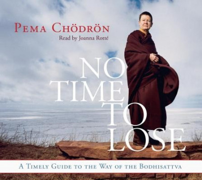 No Time to Lose: A Timely Guide to the Way of the Bodhisattva foto