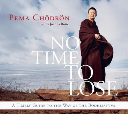 No Time to Lose: A Timely Guide to the Way of the Bodhisattva foto mare