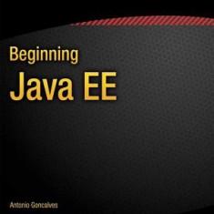 Beginning Java Ee 7 - Carte in engleza