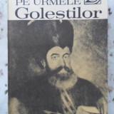 Pe Urmele Golestilor - Anastasie Iordache, 400863 - Istorie