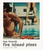 Tom Bianchi: Fire Island Pines: Polaroids 1975-1983