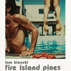 Tom Bianchi: Fire Island Pines: Polaroids 1975-1983 - Carte in engleza