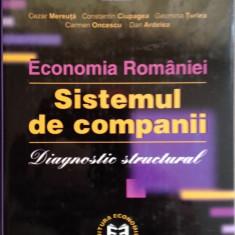 Dinu Marin - Economia Romaniei. Sistemul de companii. Diagnostic structural