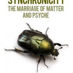 Synchronicity:: The Marriage of Matter and Psyche - Carte in engleza