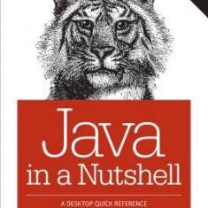Java in a Nutshell - Carte in engleza