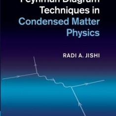 Feynman Diagram Techniques in Condensed Matter Physics - Carte in engleza