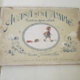 Carte rara interbelica acasa si n campie cu versuri de sarina cassvan pass - Colectii