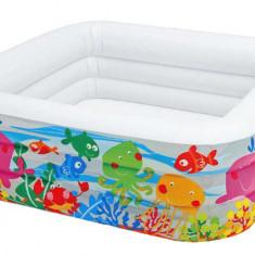 Swimming Pool Aquarium 57471 inflatable