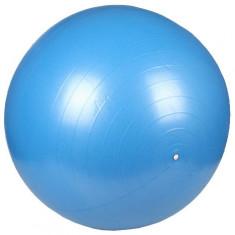 Minge gimnastica Minge gimnastica cu pompa albastru 75 cm - Minge Fitness Merco
