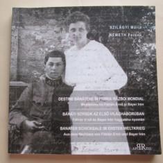 Monografie / Istorie Banat: Destine Banatene in Primul Razboi Mondial (Jurnal)