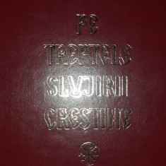 TEOCTIST - PE TREPTELE SLUJIRII CRESTINE X