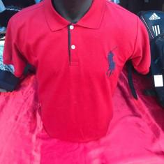 Tricou Polo ralph Lauren Lacoste lichidare de stoc tricouri - Tricou barbati, Marime: Alta, Culoare: Din imagine