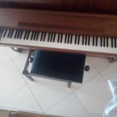 Pianina Altele