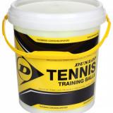 Training Mingi tenis de camp, 60 buc