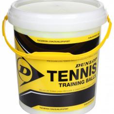 Training Mingi tenis de camp, 60 buc - Minge tenis de camp