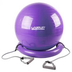 Minge gimnastica Master cu baza si manere extensibile violet 65 cm - Minge Fitness LiveUp