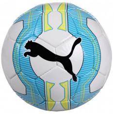 EvoPOWER 5.3 Trainer Minge fotbal Puma n. 5
