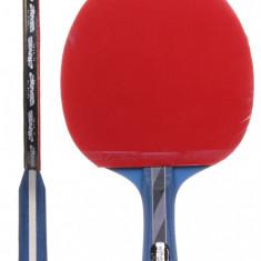 Targus Paleta tenis de masa - Paleta ping pong