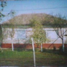 De vanzare - Casa de vanzare, 3300 mp, Numar camere: 3, Suprafata teren: 130