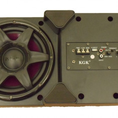 Subwoofer COMPACT cu amplificator inclus AL-250717-3