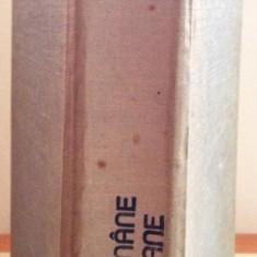 V. Breban - Dictionar al limbii romane contemporane
