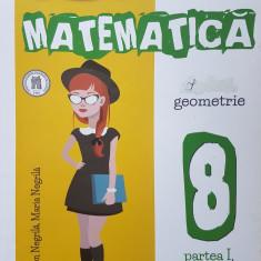 MATEMATICA ALGEBRA GEOMETRIE CLASA A VIII-A - Negrila (partea I) - Culegere Matematica