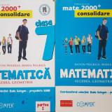 MATEMATICA ALGEBRA GEOMETRIE CLASA A VII-A - Negrila (2 volume) Consolidare - Culegere Matematica