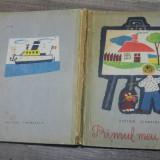 Primul meu desen - Victor Sivetidis/ ilustratii Dumitru Negrea - Carte de povesti