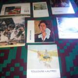 Lot carti tematica pictura