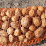 Cartofi - Legume