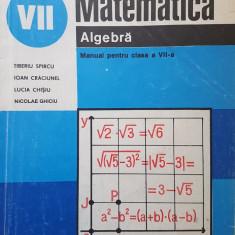 MATEMATICA ALGEBRA MANUAL PENTRU CLASA A VII-A - T. Spircu, I. Craciunel, Chisiu - Manual scolar, Clasa 7