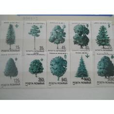 1994  LP 1343  PRINCIPALELE SPECII FORESTIERE