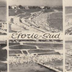 Maxivedere monocroma, 89 x 200 mm, necirculata, colaj, Eforie-Sud, R. P. R. - Carte Postala Dobrogea dupa 1918, Fotografie