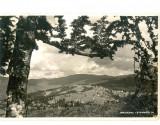 CP Z547 - PREDEAL -CIOPLEA  -CIRCULATA 21 SEP 1943 - CENZURATA RAZBOI, Fotografie