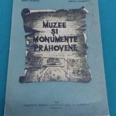 MUZEE ȘI MONUMENTE PRAHOVENE/ MIHAI APOSTOL, MIHAIL VULPESCU/ 1971 - Album Muzee