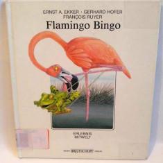 Carte pentru copii, in limba germana, Flamingo Bingo
